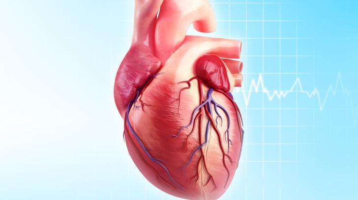 آنژین صدری چیست و چه علائمی دارد؟ برای پیشگیری چه باید کرد؟