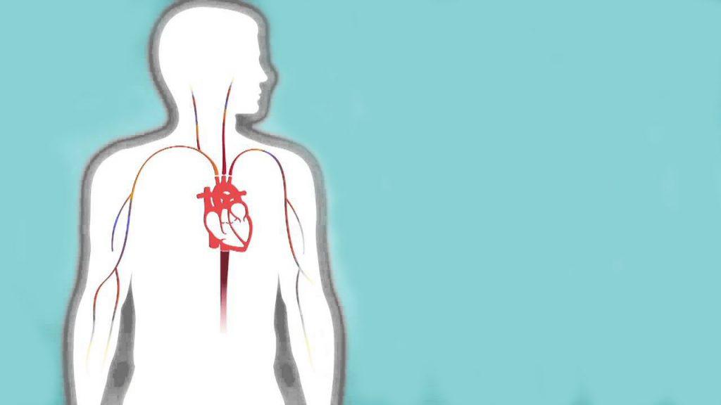 نارسایی دریچه میترال قلب