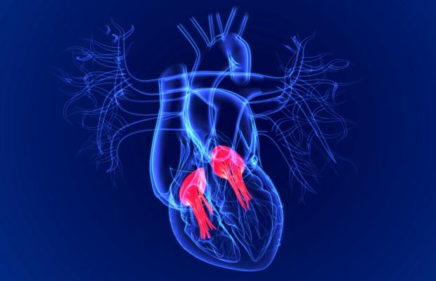 نارسایی دریچه قلبی چه زمانی و چگونه ایجاد می شود؟