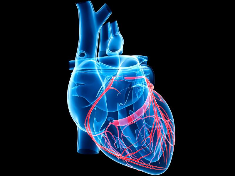 علائم نارسایی قلبی و سکته قلبی