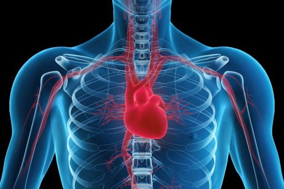 چرا رگهای قلب می گیرد
