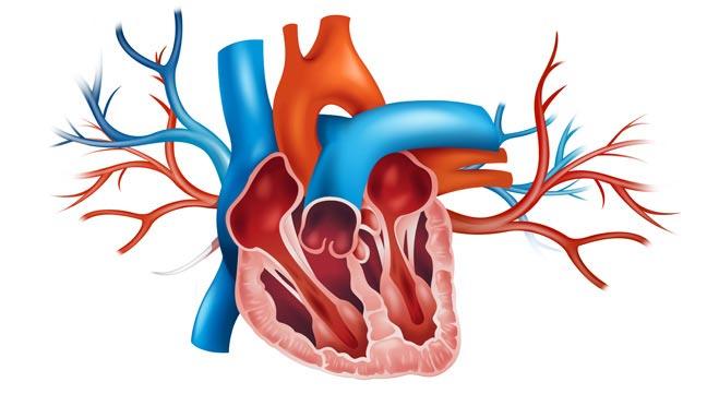 آیا التهاب قلب خطرناک است؟